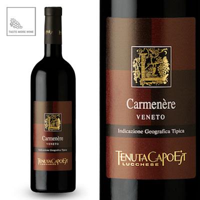 Carmenere-italiaanse-rode-wijn-tastemorewine